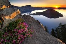 Oregon/Washington Road Trip   / by Mercedes Royce