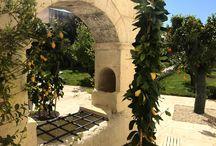 Giardini - Palazzo Ducale Venturi