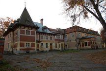 Nowa Wioska - Pałac