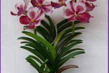 orquídeas y flores
