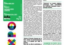 magazine LEGNOPAN / il nostro magazine bimestrale