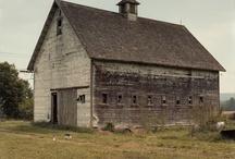 Barns / by Lisa Darley-Graham