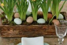 húsvét / tavasz