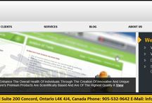 Toronto Web Development / Superior Web Solutions (SWS) is an established Toronto Web Development and Design company that provides US and Canadian businesses with complete e-business solutions, ranging from engaging graphic designs, website development featuring both front-end and back-end advanced functionality, online marketing services for new business revenue generation, and iPad/iPhone applications development.