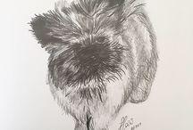 Catvspencil Art