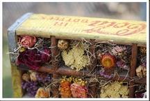 flowers to die for / by Oak Ridge Prims