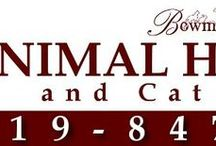 North Carolina Vets Who Practice One or More Modalities in Holistic and Integrative Veterinary / http://www.bestcatanddognutrition.com/roger-biduk/list-of-900-u-s-holistic-integrative-veterinarians/