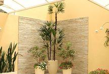 Casa | Jardim Vertical | Inverno / Idéias para montar jardins dentro de casa, verticais e decoração de sacadas.