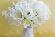 Wedding Flowers / Gorgeous florals to complete the look of any wedding