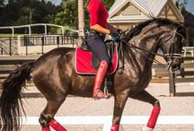 Caroline Roffman / One of the best dressage riders in the USA
