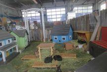 my new guinea pigs/rabbits enclosure