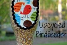 Bird feeding with WT