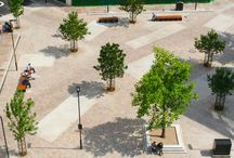 shared space plaza