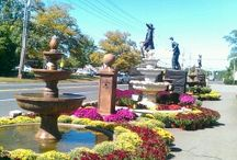 Fall at Brock Farms 2014 - Colts Neck / Browse through this preview at our Fall and Halloween Displays at our Colts Neck Location.  / by Brock Farms Garden World