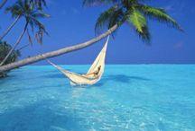 Maldives / by Mandi Harlow