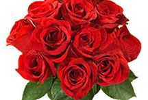 Order Flowers Online / Order flowers online and have them delivered at your convenience so that you surprise her and give her happiness like never before! http://www.countryoven.in/Flowers/Online-Delivery