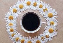 Kahve Molası  / Gün ortasında bir kahve molasına ne dersiniz? #escicekcom #kahvemolası #papatyalar #çiçekler #çiçektasarım #yakında