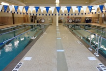 Swimming / All things aquatic