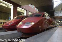 Trains   Treinen / Photographs from trains