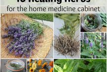 Healing Herbs / I wish everyone would understand that the Earth gives us everything we need. Herbs, flowers, plants etc have the most amazing benefits. Consider them Natures Natural counterparts to the toxic and evil Big Pharma