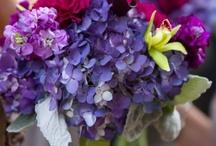 Planning A Fabulous Wedding / by Leigh Keller