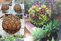 Useful or fun gardening ideas / Unusual ideas or garden design tips, garden secrets and myths