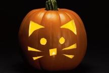 Halloween? / by Bailey Blair