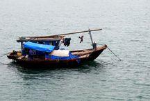 Baia di Ha Long. VIETNAM, dove il drago scende al mare