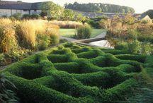 Bury Court Garden, Bentley, Sussex