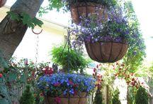 Nana Ruby's Low Maintenance Garden
