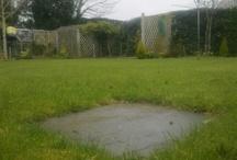 Lawn treatments / Lawn treatments