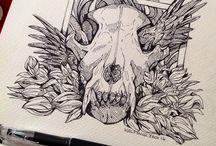 wonderful draws