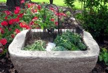 Little Gardens / by Karen B