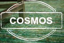{Anji Mountain: Cosmos Collection}