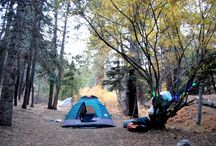 camping / by Jess Carrillo