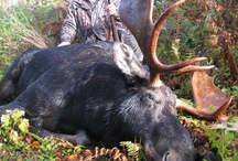 Hunting! / by Erin Carlin