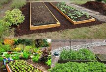 ...idee per il giardino
