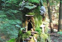 Fairy garden / Botanic, garden, plants, flower