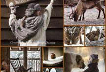 Vinter hyttekos