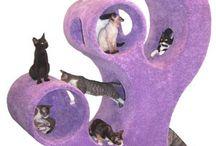 Marvy Pet Stuff / by Lisa Stringer