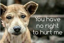 TITLE, YOU HAVE NO RIGHT TO HURT ME. animals what did they ever do to your but love you!!!! Like this.....