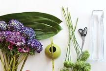 Garden {Floral Design} / by Bren Haas