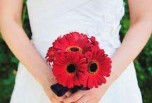wedding flower ideas / by Kristen Smock