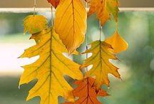 Herbst, Autumn / Herbst, Dekoration, Basteln, Außenbereich, Innenbereich, Themenbereich
