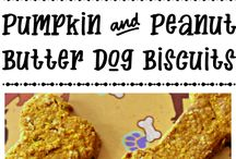 Dog Tips, Treats, and Recipes