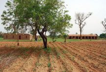 LEVS | Mali
