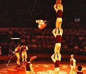 Acrobatics / Acrobatics is the performance of extraordinary feats of balance, agility, and motor coordination. It can be found in many of the performing arts, sports (sporting) events, and martial arts. Acrobatics is most often associated with activities that make extensive use of gymnastic elements, but many other athletic activities may also employ acrobatics.