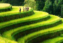 Travel (Vietnam)