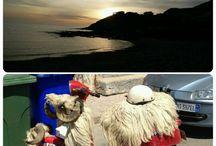 Sardegna la mia terra