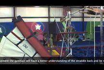gymnastic Bar WAG